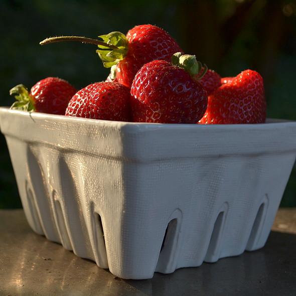 Strawberries @ Home