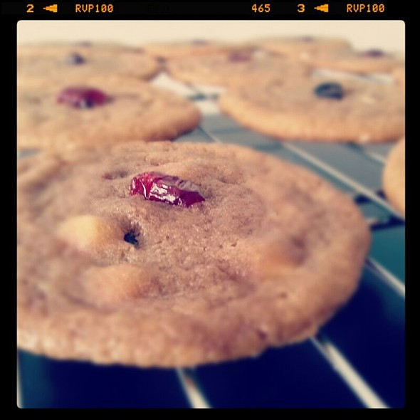 Gooey Belgian White and Milk Chocolate Chip Cookie Topped With Succulent Cranberry @ Cookie jar