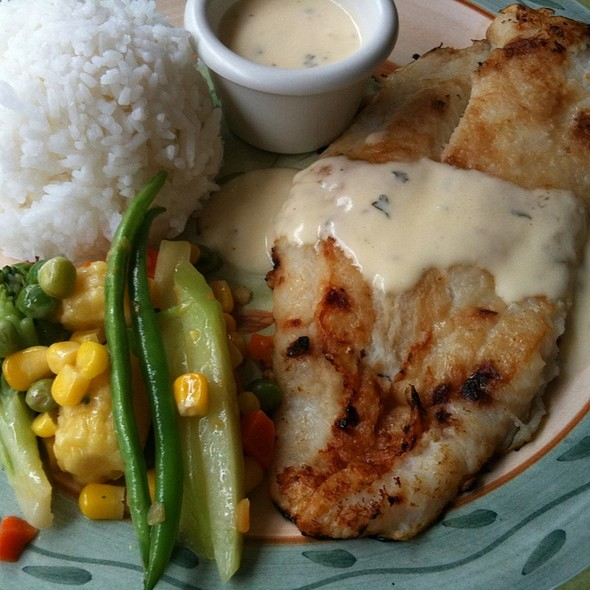 Grilled John Dory fillet @ Arabela Cakes, Pastries, Pasta, Pizza and Coffee