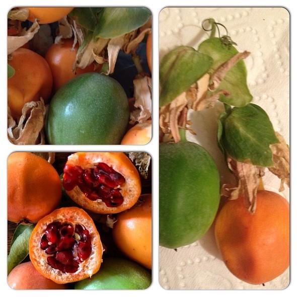 Passion Fruit @ Anne Mutfağı