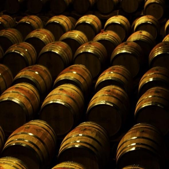 Wine Barrels @ Groot Constantia