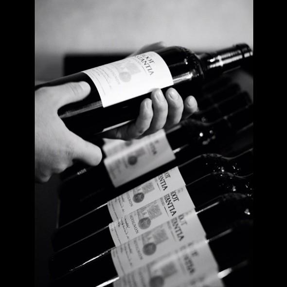 Wine @ Groot Constantia
