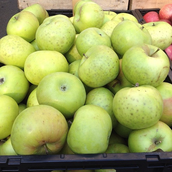 Summer Rambo Apples @ Annandale Farmer's Market
