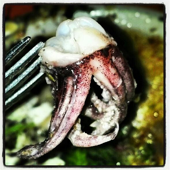 Braised Calamari @ Bacchus