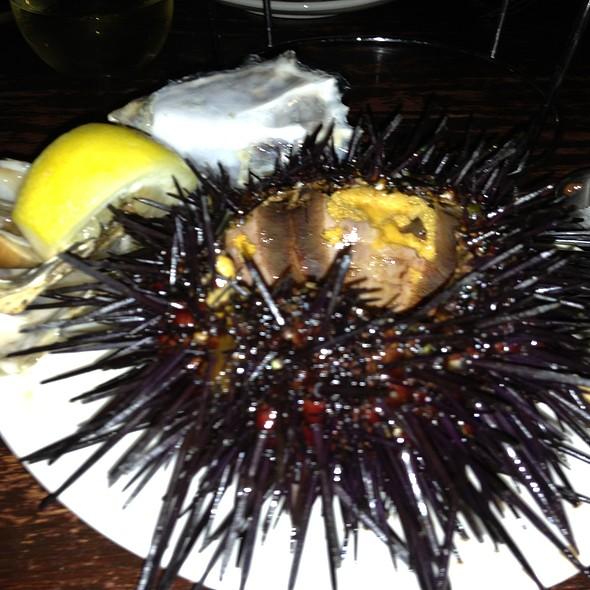 Sea Urchin - The Hungry Cat - Santa Barbara, Santa Barbara, CA