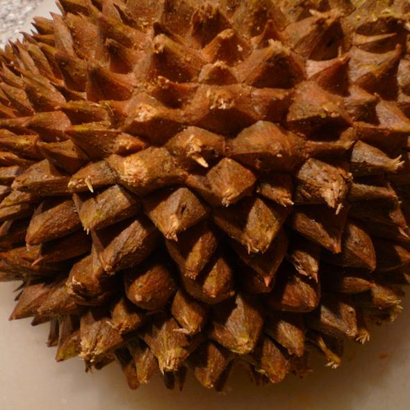 Durian @ The Foodspotting Holiday Spotathon