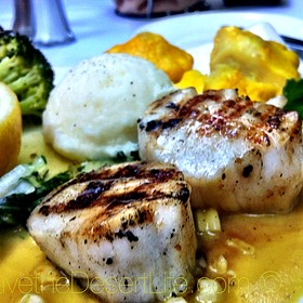 Grilled Diver Scallops