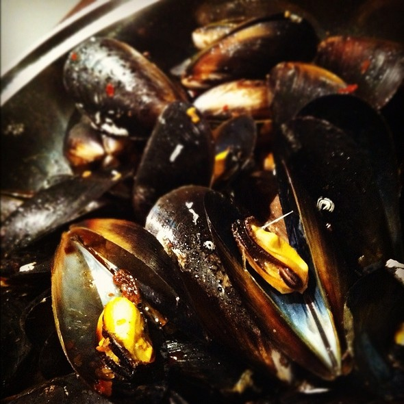 X.O Sauce Mussels @ Homeshweethome