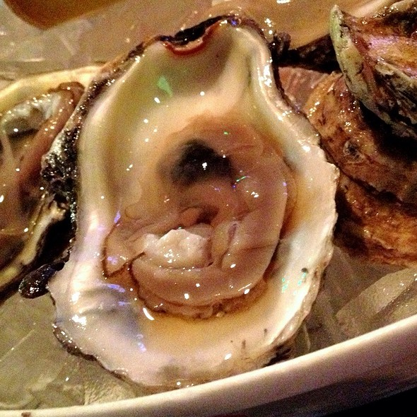 Oyster @ Hooters