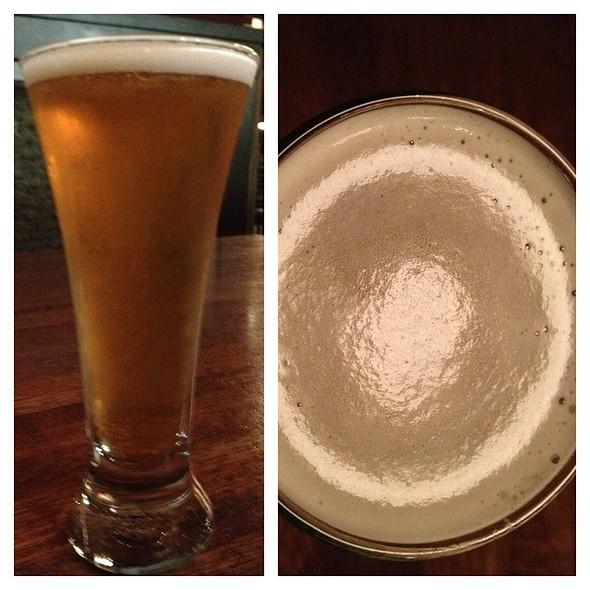 Champaign Blonde Ale - DESTIHL-Champaign, Champaign, IL