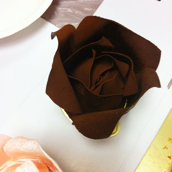 Rose Chocolate Cake @ Patisserie Tony Wong