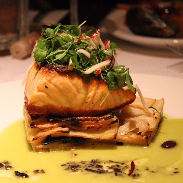 Grilled Loch Duart Salmon - Scala's Bistro, San Francisco, CA