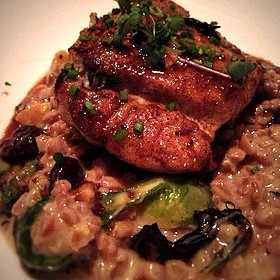 "Pan Seared Grouper With Truffed Farro ""Risotto"", Brussel Sprouts, Preserved Sour Cherries, Roast Acorn Squash - La Provence"