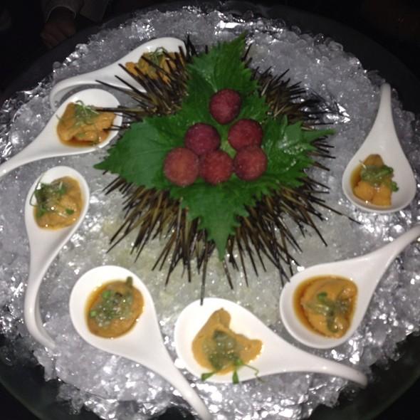San Diego Sea Urchin