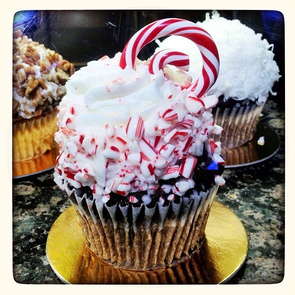 Chocolate Cupcake With Candycane And White Frosting