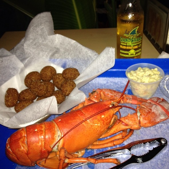 1 1/4 lb. Whole Fresh Maine Lobster @ Jazzys Mainely Lobster and Seafood