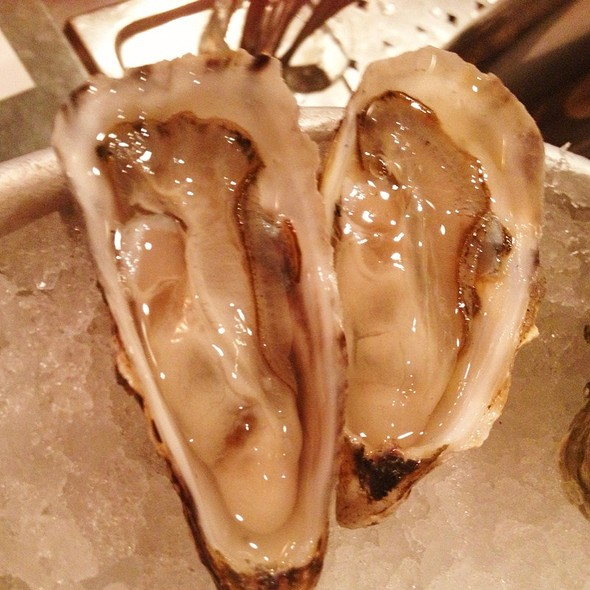 Treasure Cove Oysters @ The Walrus and the Carpenter