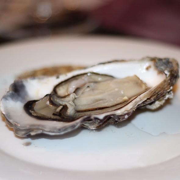 Oysters Fines De Claires @ Andes Premium Catch