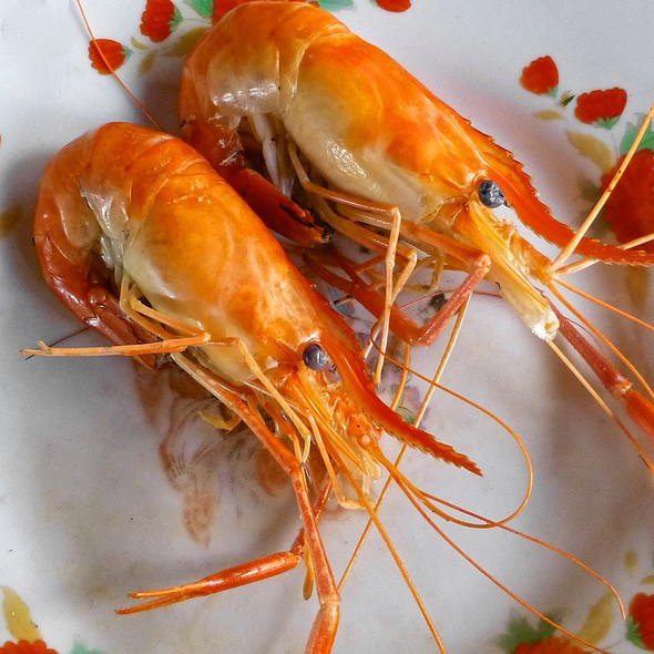 Sweet Water Prawns @ Muoi Huong Eco-Resort