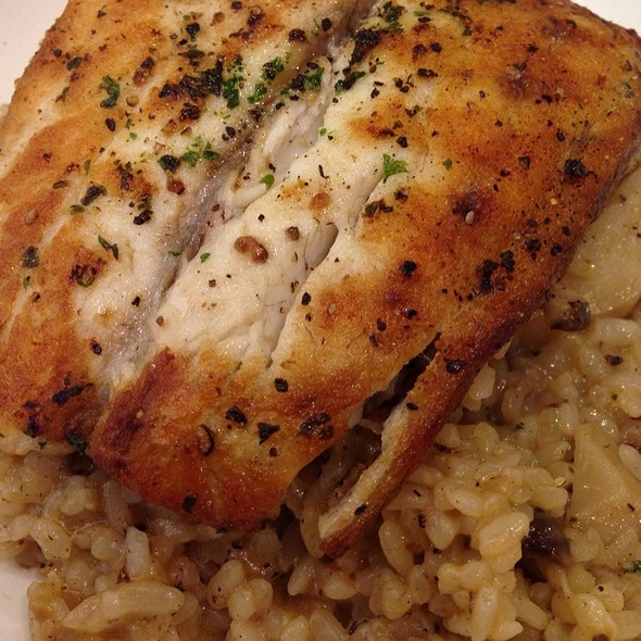 Pan-Fried Sea Bass With Mushroom Risotto @ Pomodoro