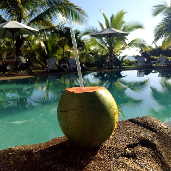 Welcome Coconut Drink @ Popa Paradise Beach Resort