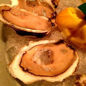 Oysters on the Half Shell - Fin - Tropicana Atlantic City, Atlantic City, NJ