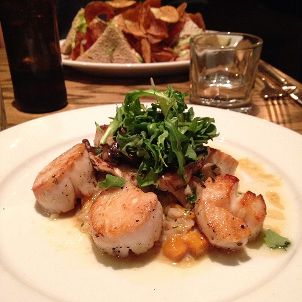 Day Boat Scallops - Home 231, Harrisburg, PA