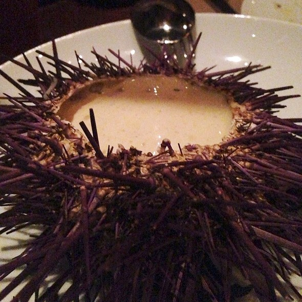 Fort Bragg Sea Urchin