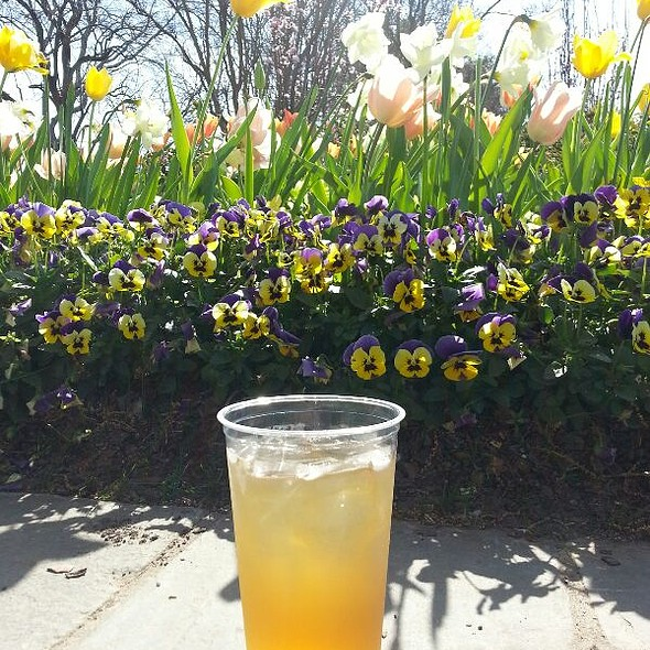 Peach Ginger Green Tea @ Dallas Arboretum Cafe On The Green