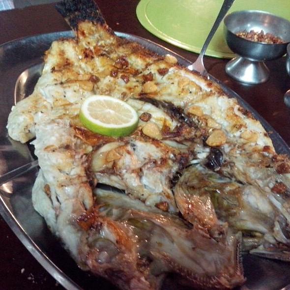 Fish @ La Vigia