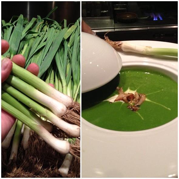 Green Garlic Soup @ Wolfgang Puck American Grille