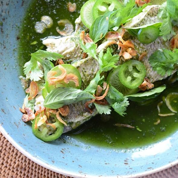 Steamed Tai Snapper With Chili Cilantro Paste @ 'ULU Ocean Grill