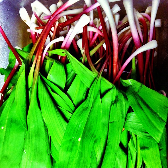 Ramps @ Atwood