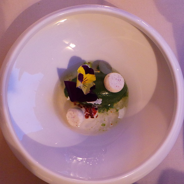 Basil Sorbet, Tomato Essence, Cream Cheese @ Agata's Restaurant