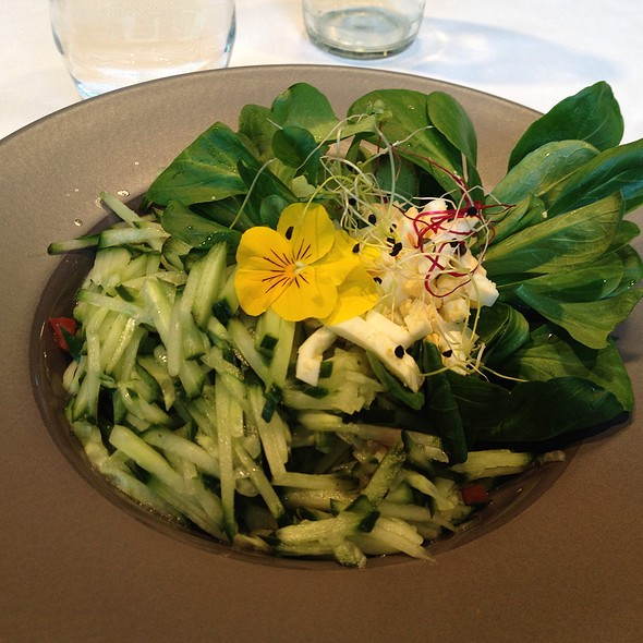 Greens And Cucumber Salad