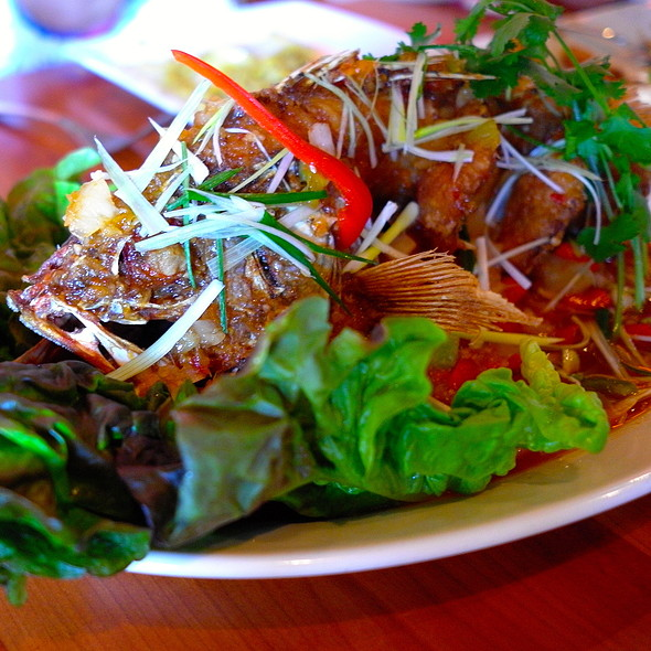 Deep Fried Red Snapper (whole fish) - Soi4 Bangkok Eatery - Scottsdale, Scottsdale, AZ