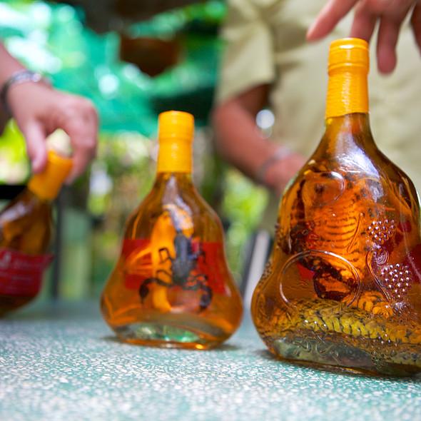 King Cobra Wine @ Mỹ Tho, Tiền Giang Province