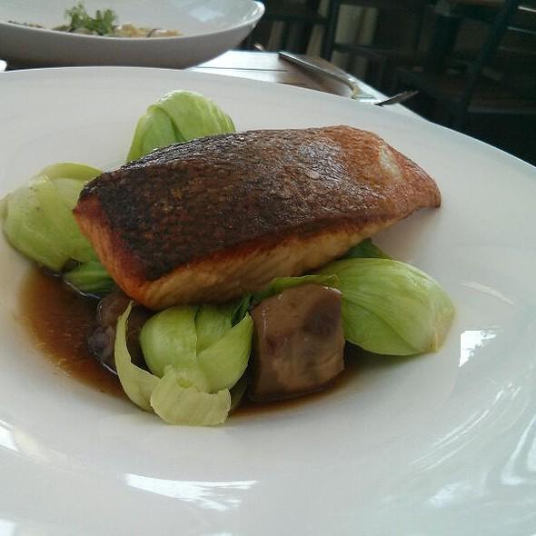 Seared Salmon @ Toku