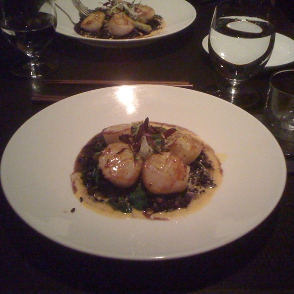 Divers' Scallops Over Forbidden Rice Risotto - Basa, Louisville, KY