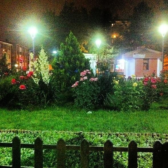 Efekt verince kartpostallık bi kare oldu. :) çiören şı ıl ı @ Necip Fazıl Kısakürek Parkı