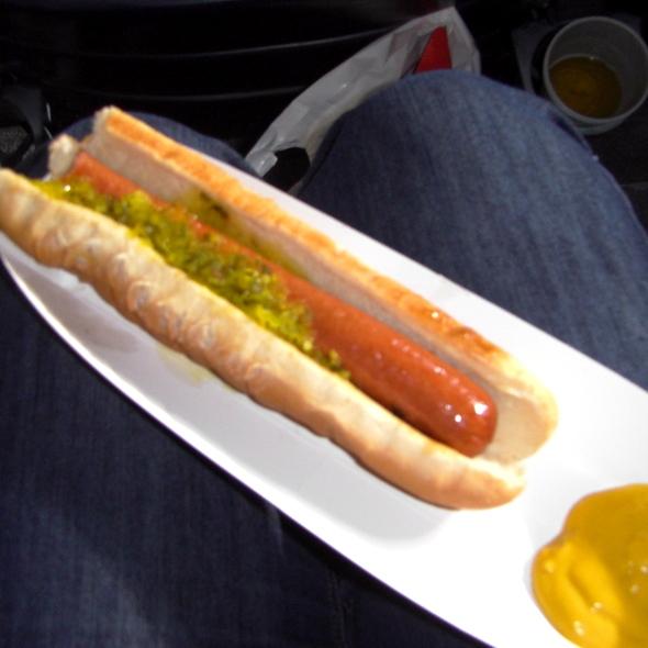 Braves Dog @ Turner Field