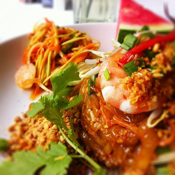 Phad Thai for lunch! @ Myelephant Thai Restaurant