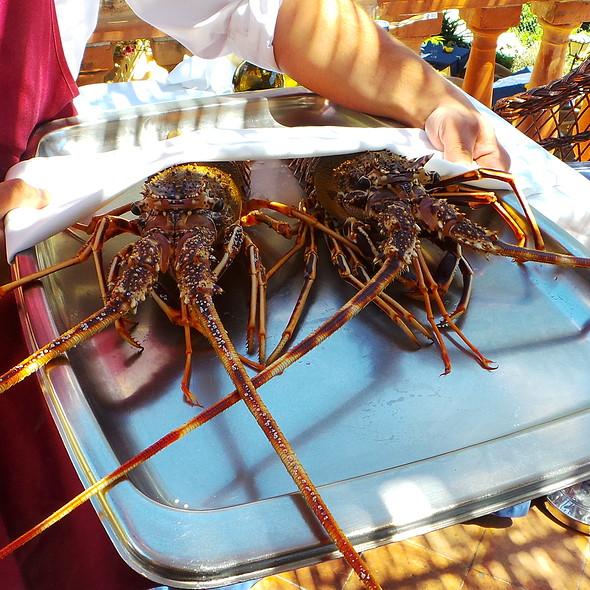 Spiny Lobster @ Es Raco d'es Teix