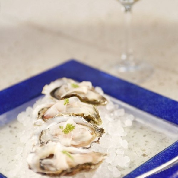 Oysters and Wine - Cobalt Restaurant and Lounge - Vero Beach Hotel and Spa, Vero Beach, FL