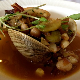 Clams With Fava Beans