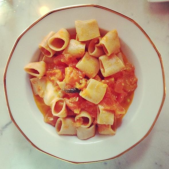 Calamarata with tomato sauce & fior di latte @impasto_mtl @ Impasto