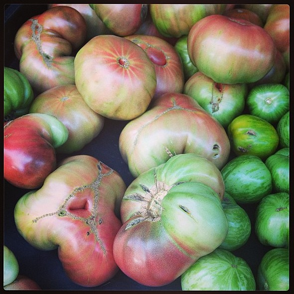 Saturday morning tour. My happy place. @ Union Square Greenmarket