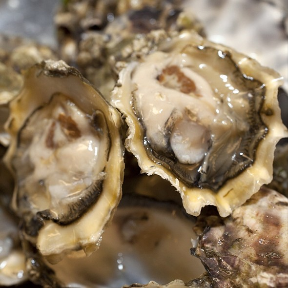 Deer Creek Pacific Oysters (Hood Canal, Wa) - Mercat a La Planxa, Chicago, IL