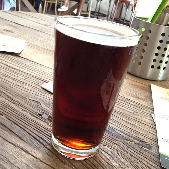 Sierra Nevada Brown Ale @ Albany Taproom