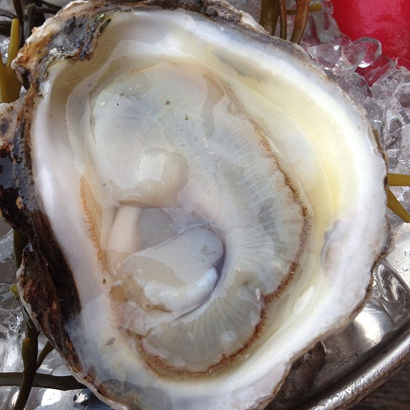 Charles Island Oyster - Saxon + Parole, New York, NY
